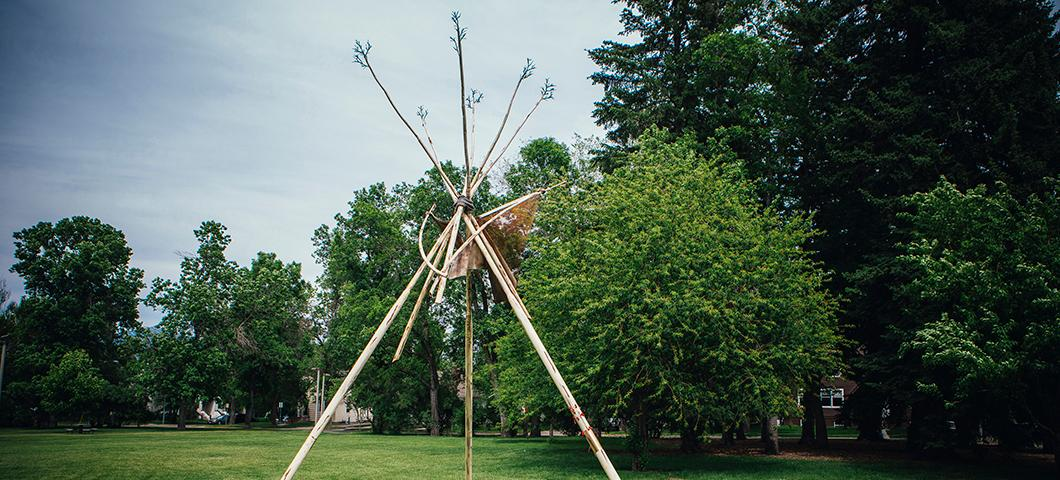 Teepee structure by Jim Dolan on Hannon Lawn
