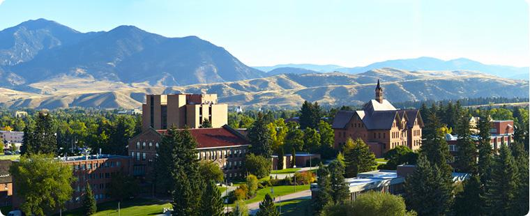 MSU Bozeman Campus Panoramic Poster